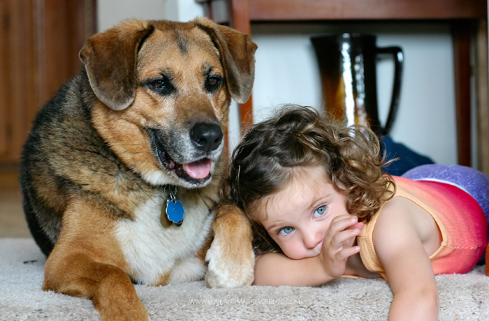 5 Reasons Every Mom Should Get A Dog