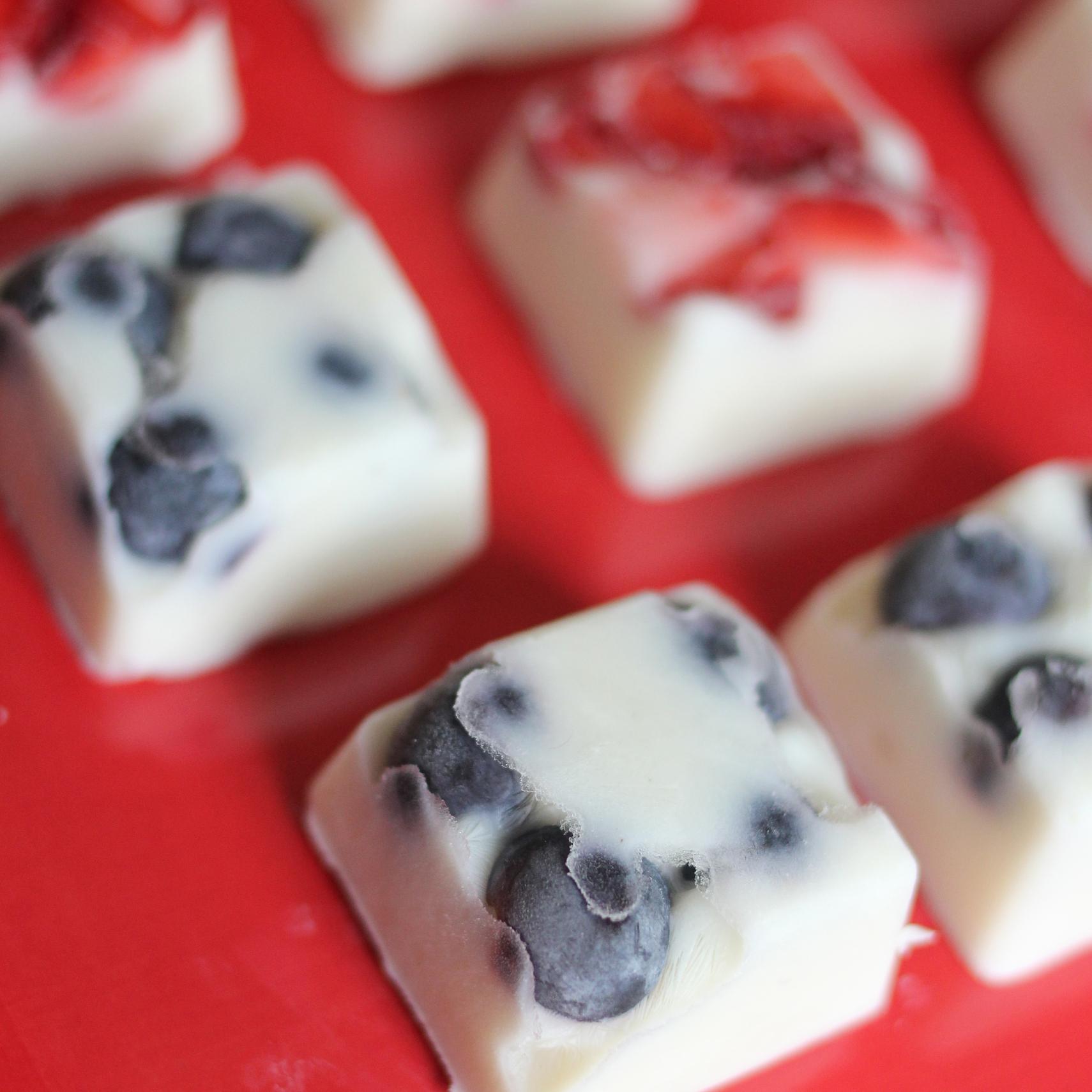 yogurtbites2