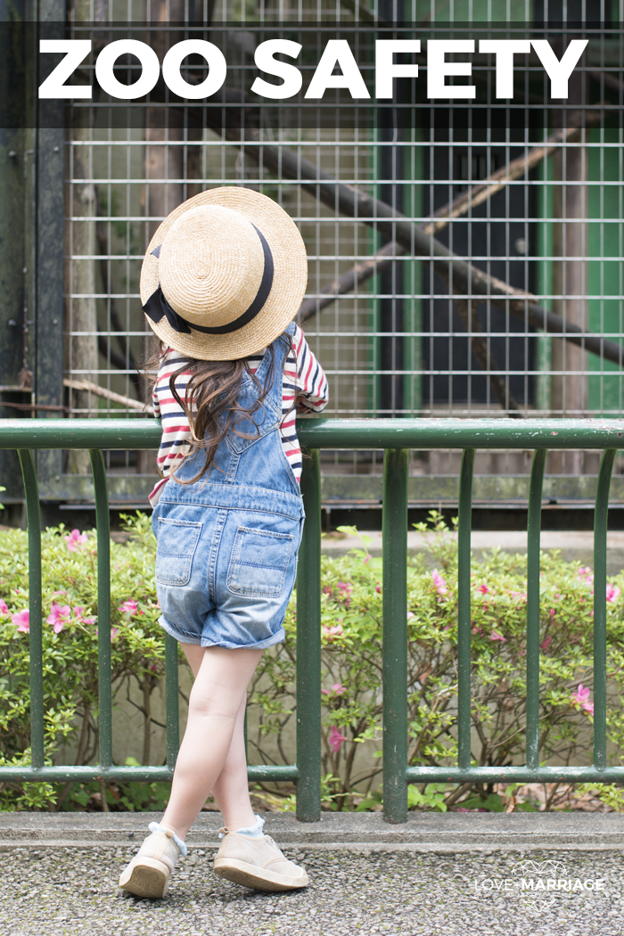 10 Must Know Tips to Keep Your Child Safe at the Zoo