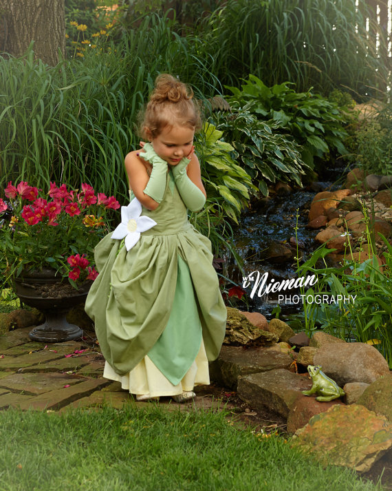 This is the most beautiful of all the princess Halloween costumes I've ever seen!