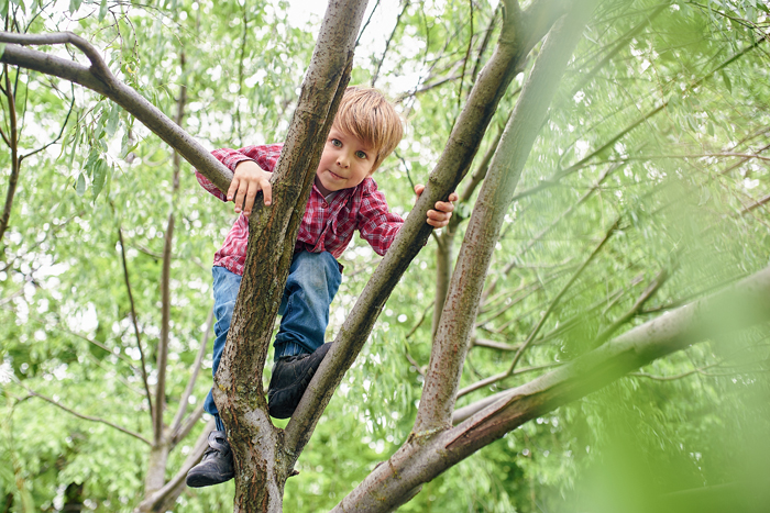 Science Explains Risky Outdoor Play Is Good Four Kids Health