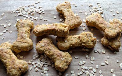 DIY Peanut Butter + Pumpkin Dog Treats