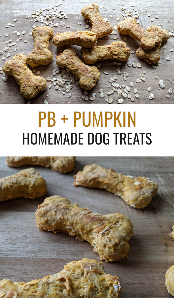 Easy Homemade Dog Treats with Peanut Butter and Pumpkin