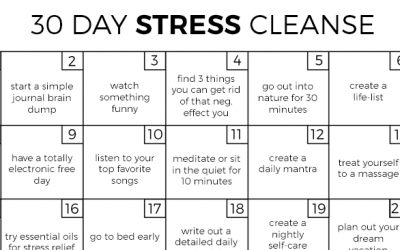 30 Day Stress Cleanse