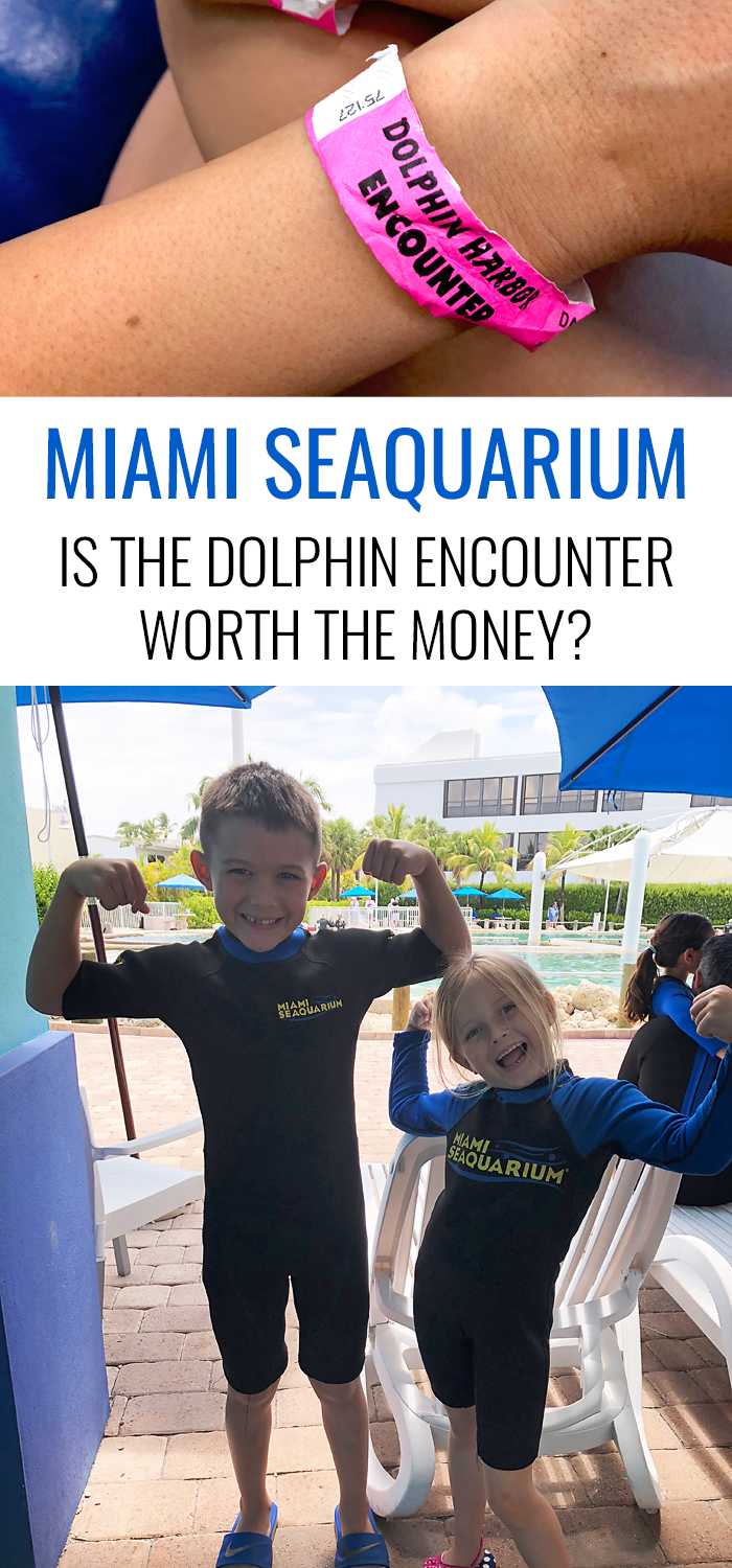 Miami Seaquarium | Is the Dolphin Encounter worth the money?