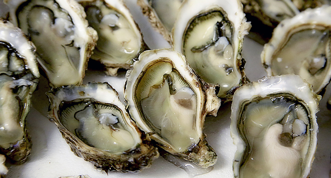 Doctors are starting to use oysters to treat anxiety and depression, here's why.