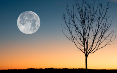 Spooky! Friday The 13th and A Full Moon on The Same Day
