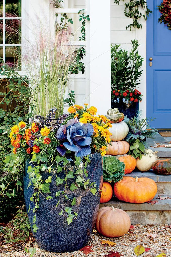 ornamental kale pumpkins porch