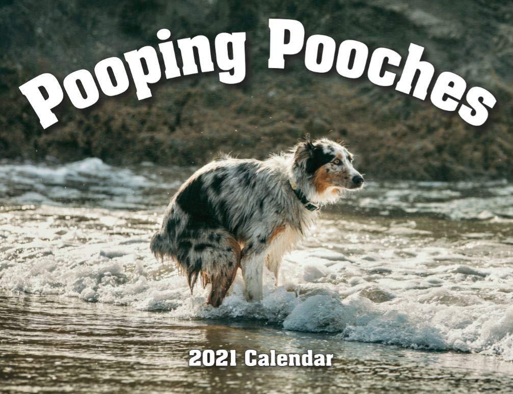 pooping pooches calendar - gag gift