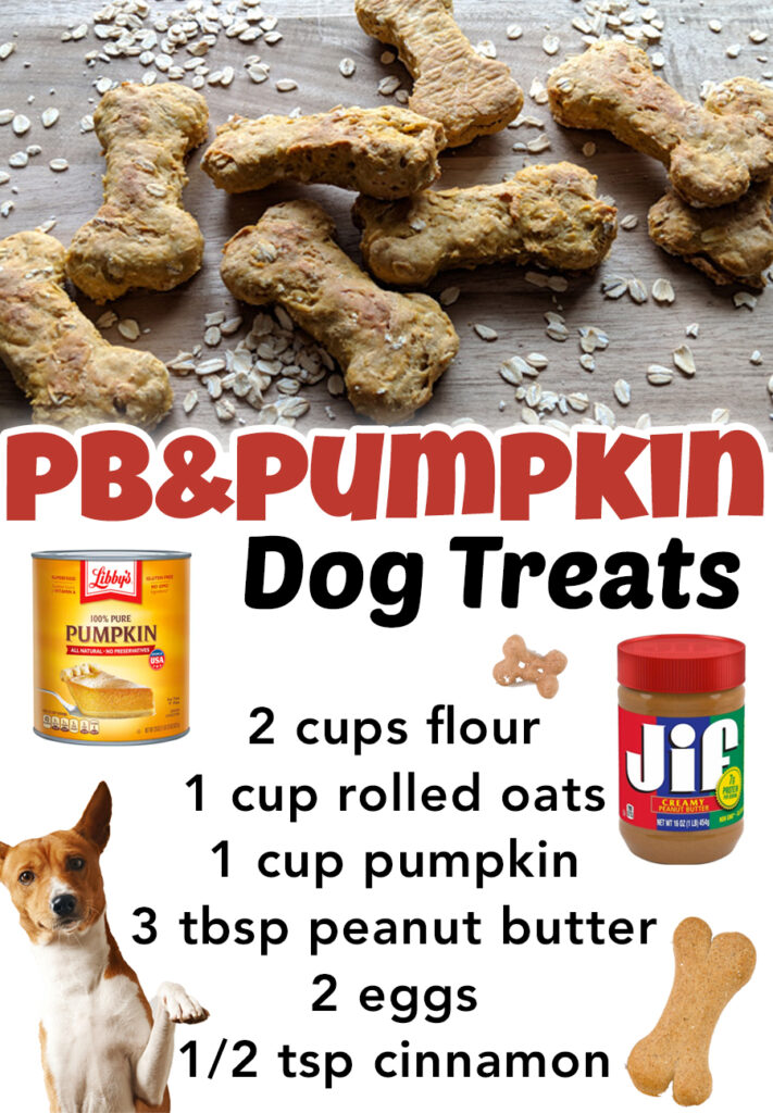 Your dogs are going to love these easy homemade dog treats with pumpkin and peanut butter! Super easy DIY dog treats recipe.